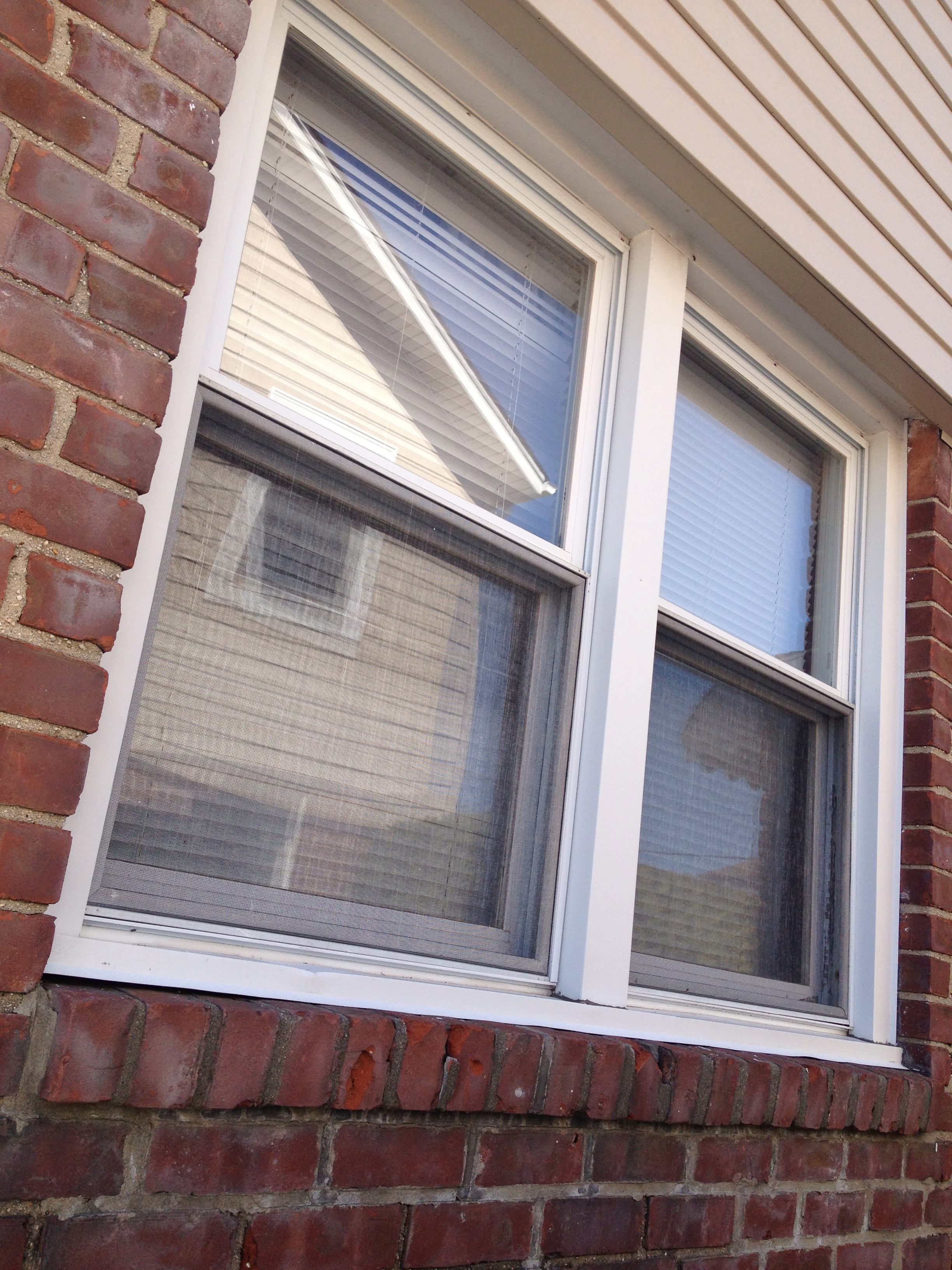 Double hung windows new us window factory inc for Window factory